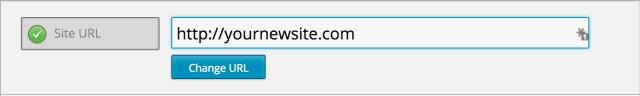 update site url
